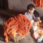 nepal-(13)